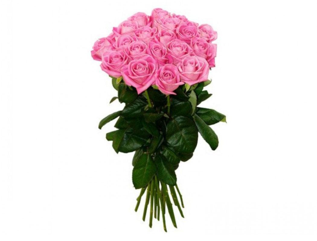 Саду оптом, красивые букеты роз из 15 штук