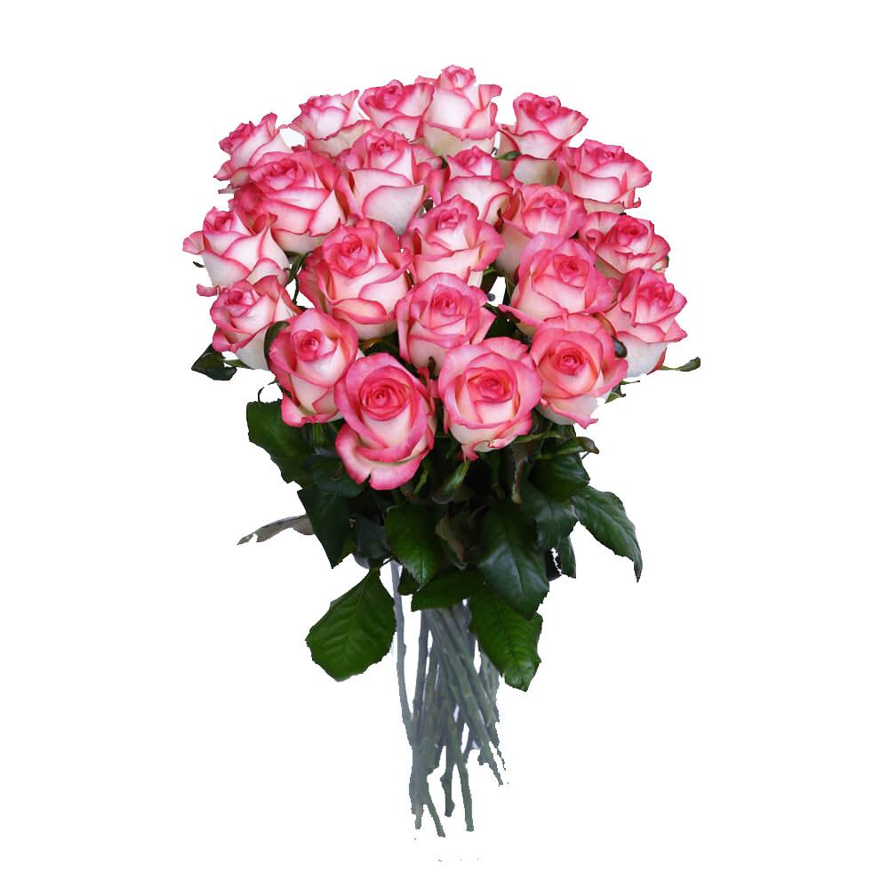 Букет из двухцветных роз